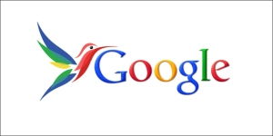 Algorithme Hummingbird Google - AUTOVEILLE